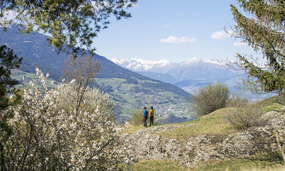 Der Frühling in den Bergen ruft!
