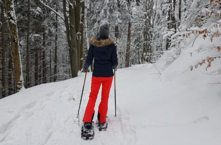 snow-3310478_960_720