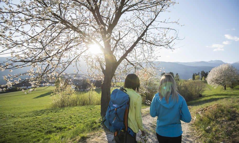 In salita e in discesa: Voglia di una vacanza escursionistica nelle Dolomiti?