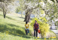 Il risveglio della primavera in montagna