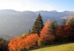 Vacanza autunnale in Alto Adige